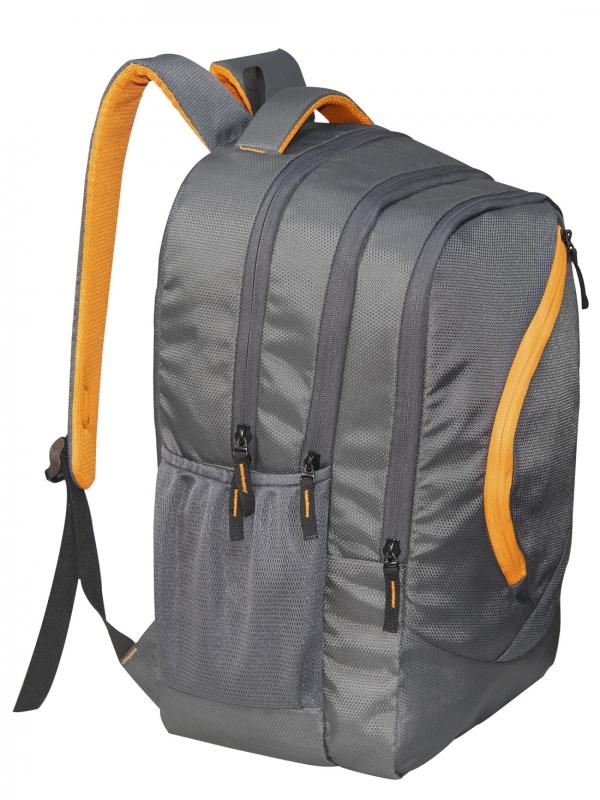 Cosmus Splendour Grey Laptop Backpack